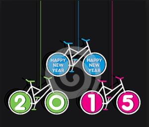 2015 bike